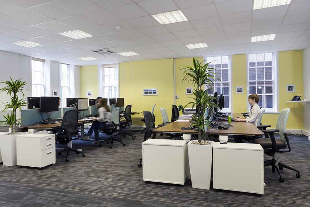 Carnstone Partners Open Office Space