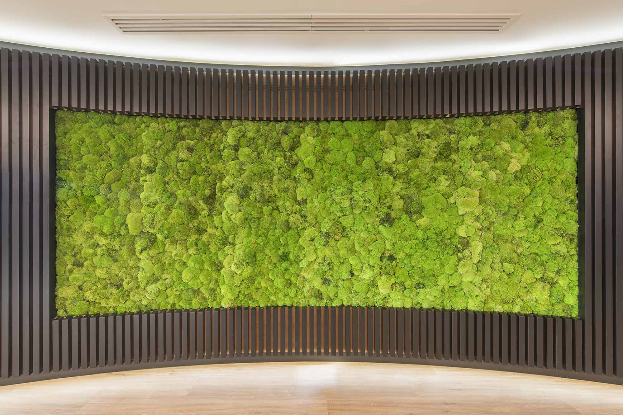 Argus Media Biophilic Wall